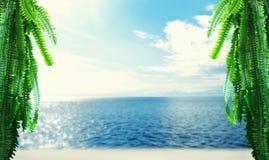 热带海岛、海滩、海、天空和棕榈分支 图库摄影