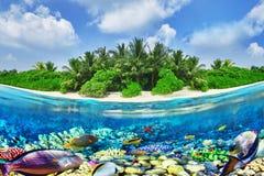 热带海岛和水下的世界在马尔代夫 免版税库存图片