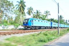 热带海岛在斯里兰卡的海洋 免版税图库摄影