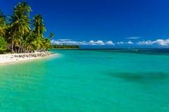 热带海岛在有沙滩和净水的斐济 免版税库存图片