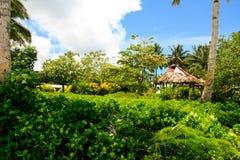 热带海岛密林在有玻利尼西亚土人传统原始建筑学的大洋洲  库存照片