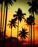 热带海岛巡航假期假日旅游业概念 库存图片