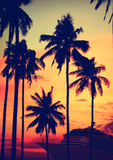 热带海岛巡航假期假日旅游业概念 图库摄影