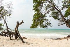 热带海岛海滩在哥伦比亚 免版税图库摄影