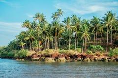 热带海岛海滩风景与棕榈树和多云蓝天的 免版税图库摄影