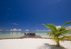 热带海岛理想的放松 库存照片