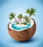 热带海岛 库存照片