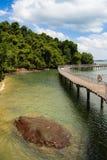 热带海岸线木板走道 库存照片