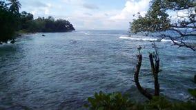 热带海岸视图 免版税库存图片