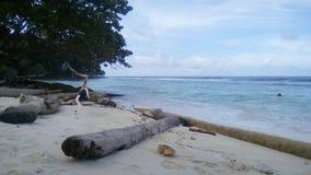 热带海岸视图 库存图片