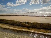 热带海水纹理反射在巴西 免版税库存照片