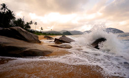 热带海海滩波浪海岛概念 免版税库存图片