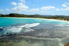 热带海湾 免版税库存图片