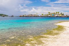 热带海滩、绿松石透明水和豪华的绿色密林在遥远的Togean或Togian海岛,苏拉威西岛,印度尼西亚 我 免版税库存图片