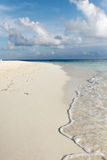 热带海滩印第安马尔代夫的海洋 免版税库存图片