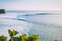 热带海滩和大理想的波浪冲浪的在巴厘岛 海浪在印度尼西亚 免版税库存图片