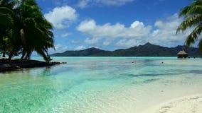 热带海滩和平房在法属波利尼西亚 股票录像