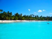 热带海滩在加勒比海, Saona,多米尼加共和国 免版税库存照片
