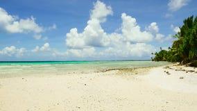 热带海滩在法属波利尼西亚 影视素材