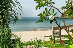 热带海滩在泰国 库存照片