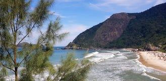 热带海滩在里约热内卢 免版税库存照片