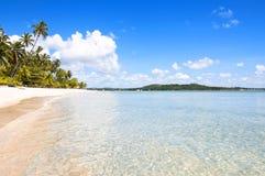 热带海滩在巴西 免版税库存图片
