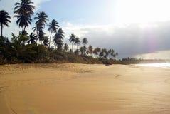 热带海滩对比高的场面 图库摄影