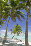 热带海滩梦想的天堂 库存图片
