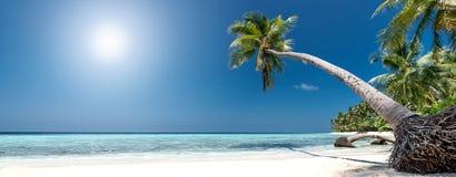 热带海滩的全景 免版税库存图片