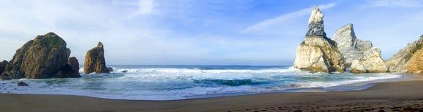 热带海滩的全景 免版税图库摄影