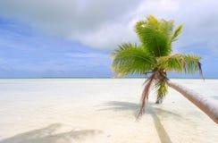 热带海滩的场面 免版税图库摄影