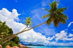 热带海滩的掌上型计算机 免版税库存图片
