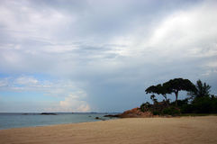 热带海滩的本质 库存图片