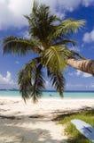 热带海滩的海岛 免版税库存图片