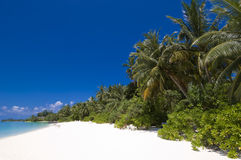 热带海滩的海岛 库存照片