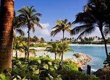 热带海滩的盐水湖 图库摄影