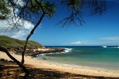 热带海滩的设置 免版税库存照片