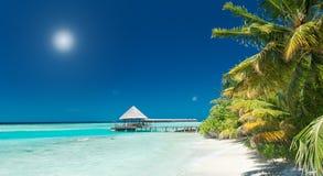 热带海滩的跳船 免版税库存图片
