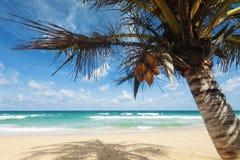 热带海滩的风景 免版税库存图片