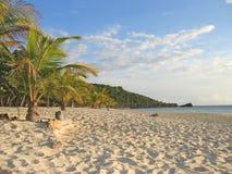 热带海滩的caraibe 免版税库存图片
