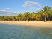 热带海滩的caraibe 免版税库存照片