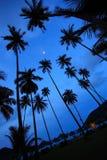 热带海滩美好的全景 免版税库存照片
