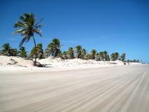 热带海滩美好的场面 免版税库存图片