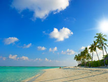 热带海滩美好的日落 免版税库存照片