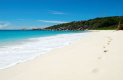 热带海滩美好的脚印 免版税库存图片