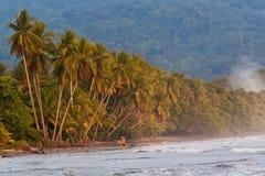 热带海滩肋前缘原始的rica 库存照片