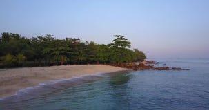 热带海滩鸟景色  股票视频