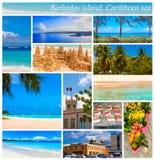 热带海滩,巴巴多斯,加勒比 免版税图库摄影