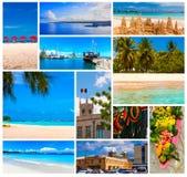 热带海滩,巴巴多斯,加勒比 库存图片