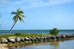热带海滩, Key West 免版税库存照片